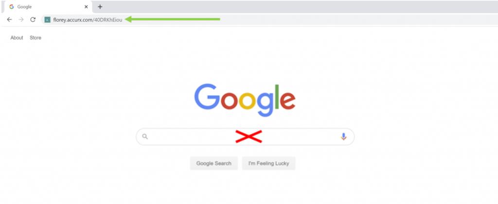 Descriptive image showing where to paste the URL.